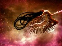 :: Born To Fly ::