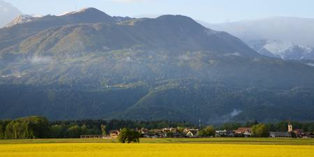 rapeseed field in Brnik with Kamnik Alps and Krvav