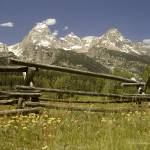"""Grand Tetons with Rail Fence"" by SamSherman"