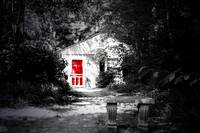 The Red Door II