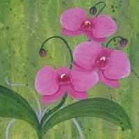 One Heart Orchids II