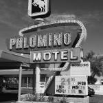 """""""Route 66 - Tucumcari, New Mexico"""" by Ffooter"""