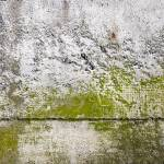 """Abstract Concrete Close-up Texture photograph 0315"" by RF_Photography"