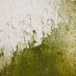 """Abstract Concrete Close-up Texture Photograph 0345"" by RF_Photography"