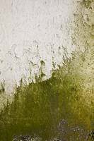 Abstract Concrete Close-up Texture Photograph 0345