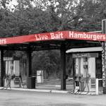 """Live Bait Hamburgers"" by bettynorthcutt"