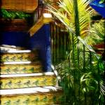 """Tropical Steps"" by jbjoani2"