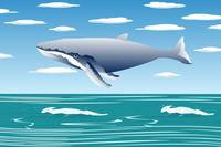 Flying sperm whale