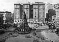 Union Square Holiday Tree c1920 by WorldWide Archive