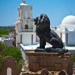 """The Lion of San Xavier"" by jonno23"