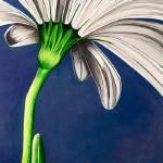 """Hello Daisy"" by StudioEriksdotter"