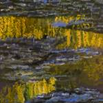 """Monet inspired reflections of Weeping Willow on wa"" by Pfister"