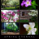 """Spring Eternal at The Inn at Cedar Falls"" by jimcrotty"