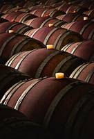 Bulgarian Wine Barrels