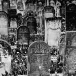 """""""Jewish cemetery in Czeladz"""" by jaceklidwin"""