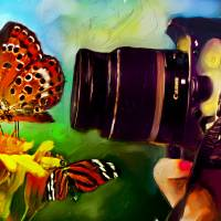 ButterflyShooter Art Prints & Posters by Ted Azriel