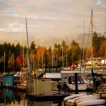 """Stanley Park Harbour"" by raetucker"