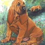 """Bloodhound Puppy Dog Art"" by artbykkay"