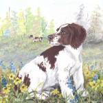 """American Brittany Dog Puppy Art"" by artbykkay"