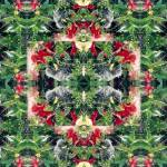 """Floral Landing ~ Quilted Photo"" by marshacarson"