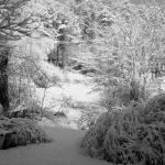 """snow"" by kaykay07"