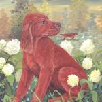 """Irish Setter Dog Puppy Art"" by artbykkay"