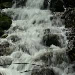 """Spring Rains"" by jsenior"