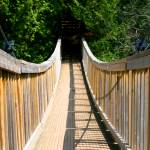 """Suspension Bridge"" by jsenior"
