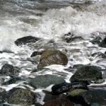 """""""Frothy Shoreline"""" by JenniferLaskerWhite"""