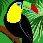 """Toucan"" by waterart"