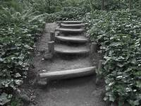 Steps on a path - sepia wash