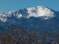 Birds & Pikes Peak - From Palmer Park - Colorado S
