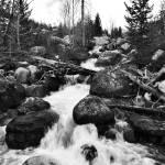 """Cottonwood Creek"" by Jason_Speer_Photo"