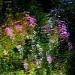 """Giverny Spirit VI"" by Woodsman"