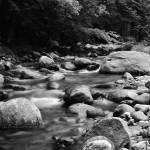 """Black and White Brook"" by jamisonsyphersphotography"
