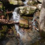 """trickling waterfal"" by contralto05"