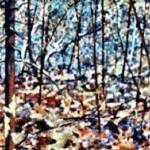 """Forest Landscape"" by Cranbury"