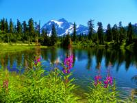 Picture Lake With A Big Story - Mount Shuksan