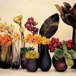 """""""Vases"""" by suteja"""