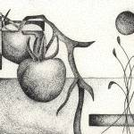 """Pen & Ink Illustration Of A Tomato Plant"" by drawingwithdots"