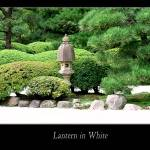 """White Lantern"" by Greggriggs"