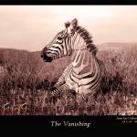 """The Vanishing"" by Greggriggs"