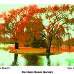 """""""Beauty of Nature"""" by randombeam"""