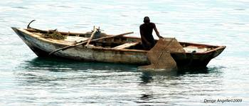Out Fishing Haiti