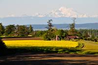 Mt Baker Ebey House