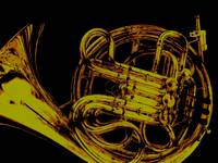 Golden French Horn