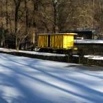 """Yellow"" by DennisSweitzer"