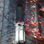 """Cobb Hall lamp with maroon ivy"" by LeonSarantosArtist"
