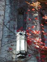 Cobb Hall lamp with maroon ivy