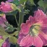 """Pink Hollyhock"" by barbbenik"